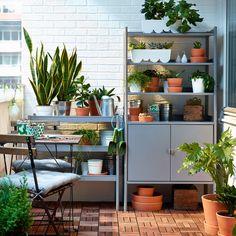 Liten balkong med grå hylla och växthus fyllda med gröna växter samt ett fällbart bord med stolar.