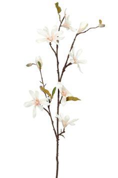 Kunstbloem Magnolia: mooi om in een grote glazen vaas van gerecycled glas meerdere takken te plaatsen.