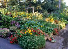 edible landscape design | rosalind creasy 2012 show judge author edible landscaping ros creasy ...