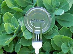 Etiquetas para plantas en Manualidades para decorar y detalles de decoración del hogar, fiestas y eventos