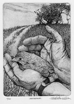 """This etching is titled """"METAPHOR"""" by Nicholas Wilson. The etching uses marks such as- hatching and cross hatching to create the darker/concentrated areas. Art Et Illustration, Illustrations, Drypoint Etching, Scratchboard, Wood Engraving, Bird Art, Graphic Art, Art Drawings, Sketches"""