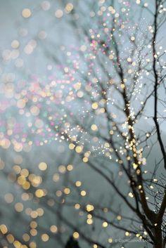 lights in winter...