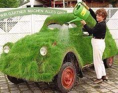 Grass on car