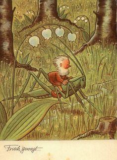 'Little Elf riding a Grasshopper', vintage postcard.Published by Hans Glogner Neu-Isenburg