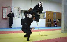 Iranian female ninja arctic weasels!!!