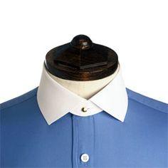 albany fold-down collar