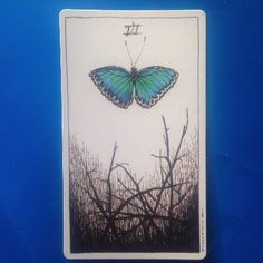 Six of Wands, Wild Unknown tarot: card meaning and description http://happyfishtarot.com/blog/six-of-wands-wild-unknown-tarot/
