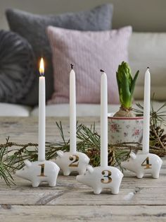 Shop powered by PrestaShop White Christmas, Xmas, Advent Candles, Little Pigs, Traditional Design, Candle Holders, Shabby Chic, Elegant, Green