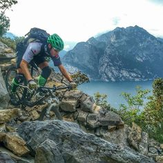 Downhillfrmtb@gmail.com #downhill #freeride #mountainbike #dh #fr #mtb #bikepark #tree #forest #natural #mountains #troyleedesign #dakine #fox #specialized #spec #maxxis #marzocchi #661 #redbull #dhbike #gopro #like #love #photooftheday #bike #amazing #follow #followme