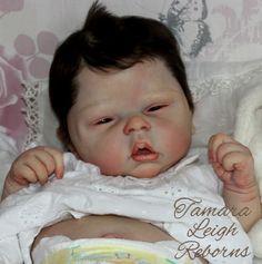 Elyse Cassie Brace Reborn Baby Girl Fake Baby Doll Tamara Leigh Reborns Tamara Auty