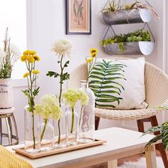 Bring the outdoors in with this California-cool decor. Find items for the home #onzulilytoday ➡️  #Regram via @zulily