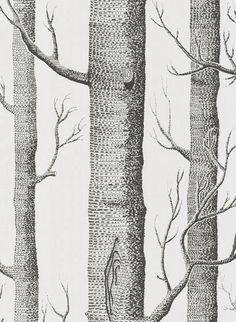 Woods - Designtapete von Cole and Son - Offwhite/ Schwarz