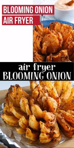Air Fryer Oven Recipes, Air Frier Recipes, Air Fryer Dinner Recipes, Appetizer Recipes, Air Fryer Recipes Onion Rings, Air Fryer Recipes Videos, Easy Dinner Recipes, Blooming Onion Air Fryer, Blooming Onion Recipes