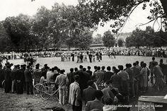 Concurso de ganado en Fadura, 1950 (Colección Archivo municipal) (ref. 00599)
