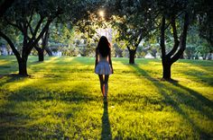Beauty + Sunlight