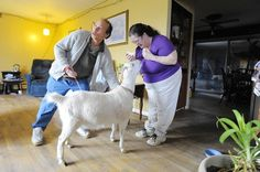 A family in Cecil County is struggling to keep it's pet goat, Snowbird, suing the county after officials moved to take the goat on a zoning technicality.