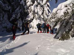 #Schneeschuhwanderung für Einsteiger im Allgäu. Wandert mit kompetenten Guides durch die wunderschöne Winterlandschaft des Allgäus.