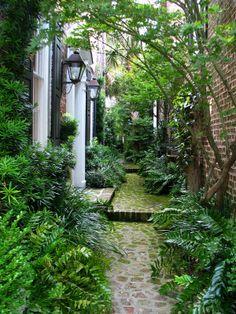 Charleston Garden - Lush side garden.