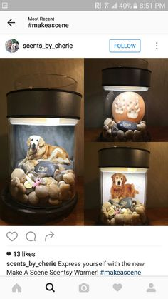 For Dog Lovers