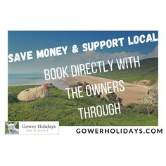 You can save money when you book your holiday directly with the property owners through Gower Holidays. Gower Peninsula, Tourist Information, Support Local, Holiday Accommodation, Swansea, South Wales, Saving Money, Holidays, Explore