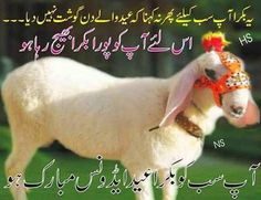 Eid ul azha sms collection for Eid (Qurbani ). Eid ul azha is eid of secrificeAdvance eid ul adha sms greetings and quotes. Funny Cool Bakra SMS Messages, Bakra SMS, Quotes, Wishes for Friends. Eid Ul Adha Mubarak Greetings, Eid Ul Azha Mubarak, Eid Al Adha Wishes, Eid Mubarak Quotes, Eid Quotes, Eid Mubarak Wishes, Eid Mubarak Greetings, Ramadan Mubarak, Qoutes