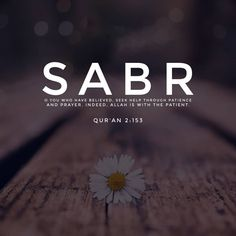 Sponsored by Zakat Foundation of America Get to Know the greatest surah of the entire Quran! Quran Quotes Love, Quran Quotes Inspirational, Imam Ali Quotes, Beautiful Islamic Quotes, Allah Quotes, Muslim Quotes, Hijab Quotes, Meaningful Quotes, Quran Sayings