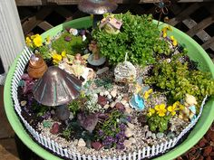 Little violas add color and many different kinds of stones add texture. Lots of detail.