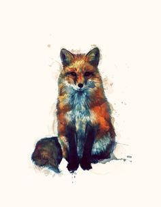 I love foxes.