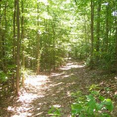 KENTUCKY, OWNER FINANCED 2.38 ACRES WITH GREAT VIEWS, LOW DOWN PAYMENT, WOODS!!