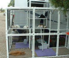 CatsOnDeck Customer Cat Enclosure Photos!
