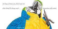 Furry Logic by Jane Seabrook