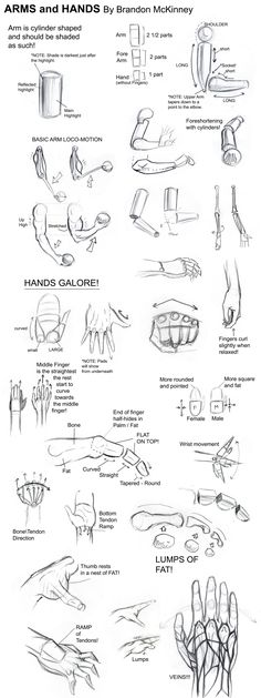 drawing tutorials -arms and hands