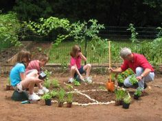 How to Plant a Pizza Garden | how-tos | DIY