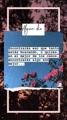 No pares de buscar ✨ Love Quotes # Cute Quotes, Words Quotes, Funny Quotes, Words Can Hurt, Coaching, Motivational Quotes, Inspirational Quotes, Positive Phrases, Postive Quotes