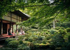 Kyoto's Secret Garden  Andrew Marston - The Unframed World