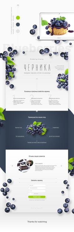 Landing page Blueberries