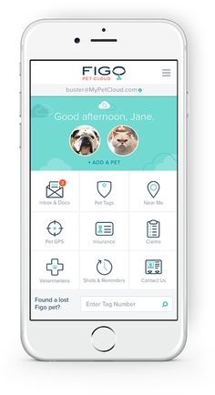 Figo Pet Cloud Mobile App on a white iPhone