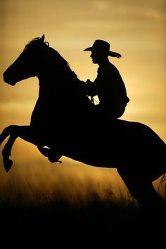 Kimberley Horse Whisperer, Dan James at sunset on Liveringa station.