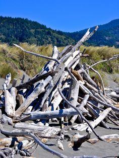 Driftwood, Gold Beach OR