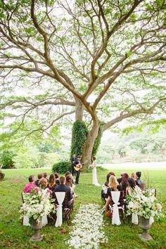 The National Tropical Botanical Gardens, Kauai Wedding. Outdoor Wedding Ceremony… The National Tropical Botanical Gardens, Kauai Wedding. Wedding Ceremony Ideas, Outdoor Ceremony, Wedding Tips, Wedding Venues, Wedding Ceremonies, Small Wedding Receptions, Vail Wedding, Low Key Wedding, Wedding Aisles