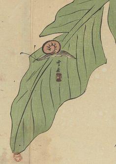 Bibliothèque nationale de France, Département des manuscrits, Japonais 612 detail of p29