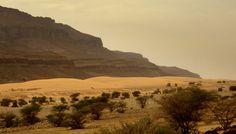 Mauritania Adrar Atar    Terjit 13