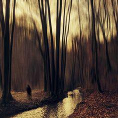 ghosts at sunrise by Dirk Wüstenhagen on 500px