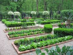 Perfect manicured vegetable garden lay-out. Brick edging & pea gravel.