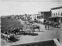 #ThrowbackThursday this is the mule train from 1863. I would not want to be a street cleaner at that time.