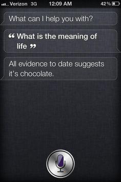 <3 Thanks Siri!