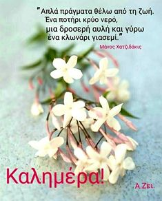 Good Morning Messages Friends, Greek Quotes, Quotations, Wallpapers, Funny, Plants, Good Morning, Wallpaper, Funny Parenting