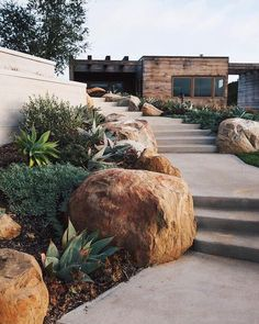 Tagged: Back Yard, Grass, Exterior, Wood Siding Material, and House Building Type. Toro Canyon House by Barbara Bestor Architecture. Beautiful Home Designs, Beautiful Homes, Xeriscaping, Concrete Patio, Front Yard Landscaping, Landscaping Ideas, Landscaping With Large Rocks, Landscaping Borders, Modern Landscaping