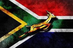 This photo represents South Africa's Rugby team and also other sports played there this photo shows their logo which is a deer. Rugby is The most popular sport in South Africa, and many people enjoy playing, there team is also very good South Africa Rugby Team, South African Rugby, Pumas, Rugby Wallpaper, Screen Wallpaper, Go Bokke, Rugby Championship, Rugby World Cup, Maori