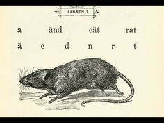 a 0-1 Video Lesson I: A cat and a rat. - McGuffey's Eclectic Primer (revised edition)